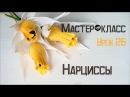 МК Букет из конфет \ Нарциссы из гофре
