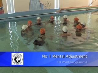 1 - Mental Adjustment