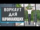 Воркаут советы для начинающих от абсолютного чемпиона по бодибилдингу – Дмитрия Селиверстова