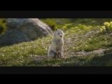 Final Fantasy XV — «Предчувствие»