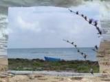 Ричард Клайдерман-Морская красота