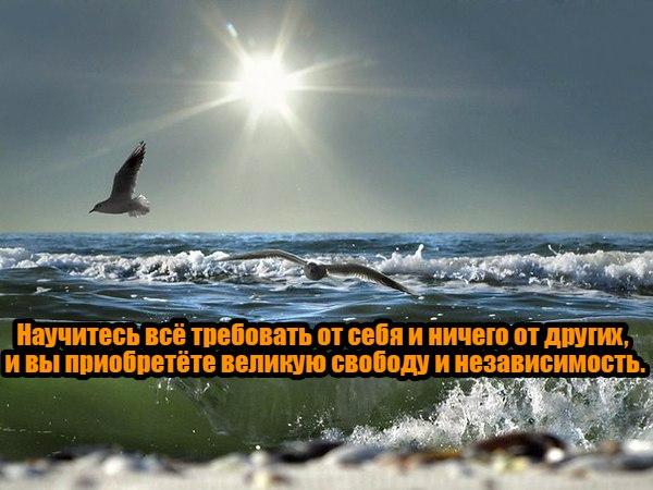 https://pp.vk.me/c637916/v637916244/19b61/0wUVCOryHZY.jpg