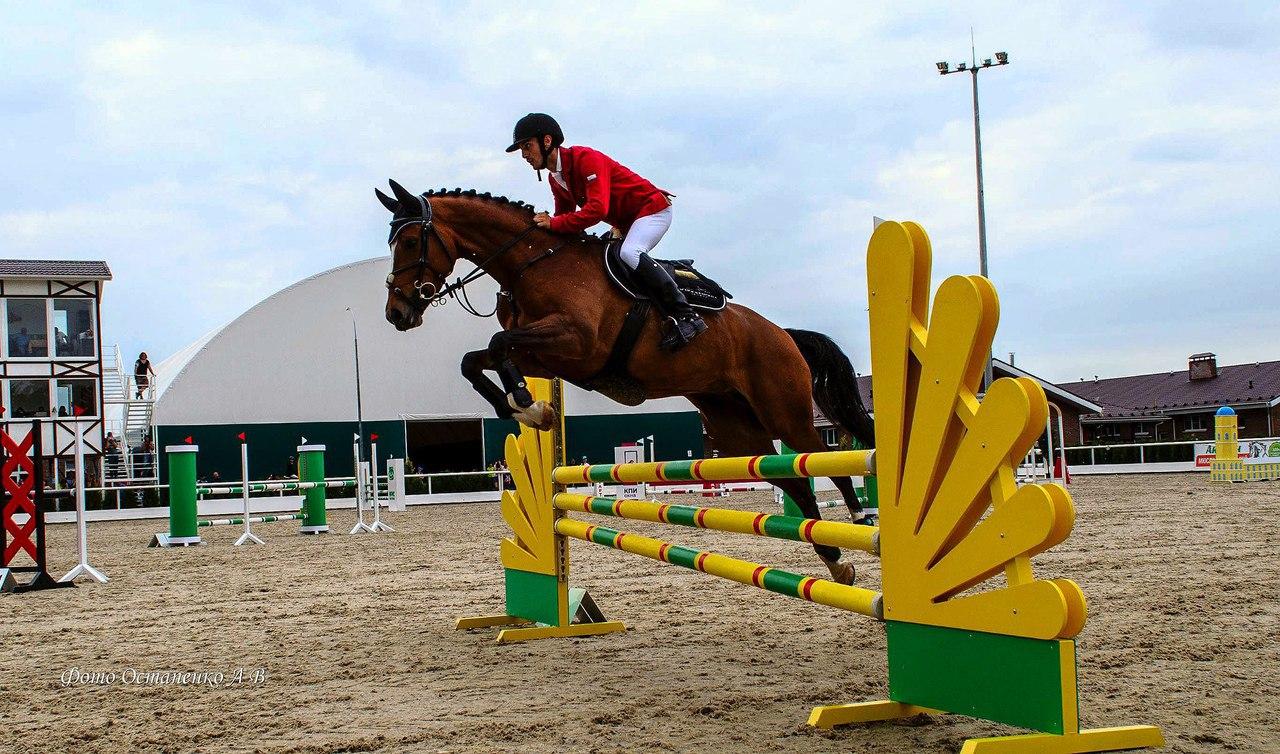 В Таганроге завершился летний Чемпионат по конному спорту