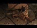 Х/Ф Далеко от войны 1 серия (2012г)