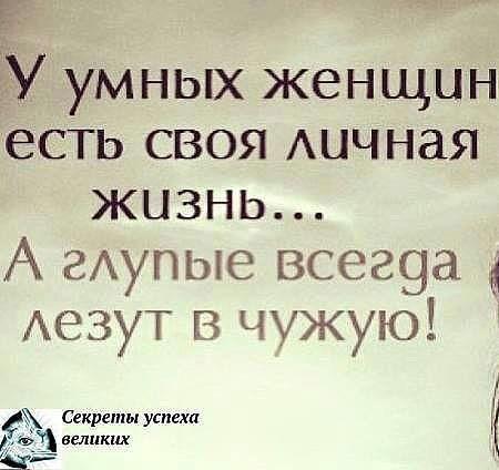https://pp.vk.me/c637916/v637916454/1944f/I20_WyAweu8.jpg