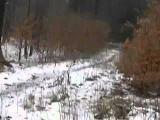 Caught On Film Levitating Girl In Russian Forest
