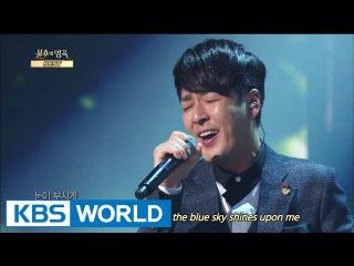 Sweet Sorrow - A Beautiful Day | 스윗소로우 - 푸르른 날 [Immortal Songs 2]