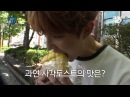 260617 2017 WoollimPICK 2 We Want to Know Truth about favorite bread 'Square Toast' EP 5
