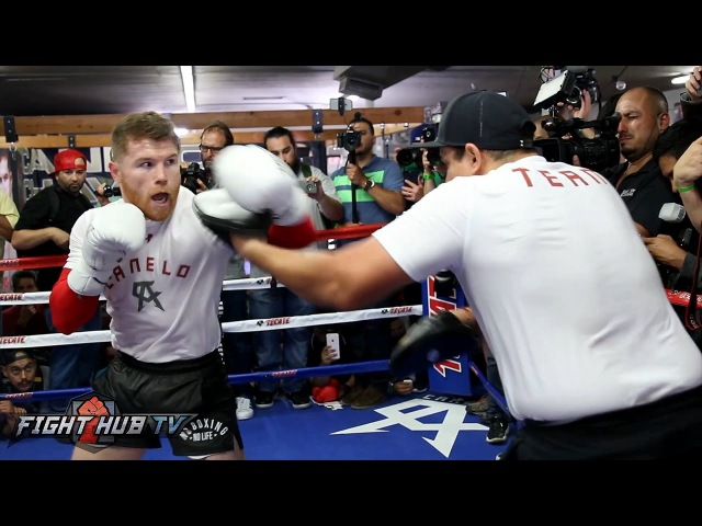 CANELO UNLEASHES 20 PUNCH COMBO ON MITTS FULL MITT WORKOUT VIDEO