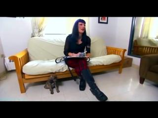 «Введение в собаковедение» (18 серия) (Научно-популярный, животные, 2010)