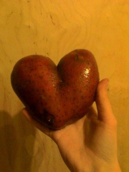 От картошки, с прошедшим днём Святого Валентина💖 Анон.