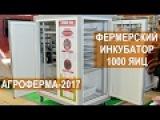 Инкубатор Стимул-1000 от компании Стимул-Инк. Выставка АгроФерма-2017