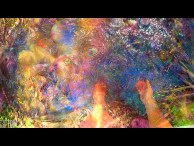 High Dose SHROOMS Trip Simulation (POV) | PSYCHEDELIC Forest Adventure