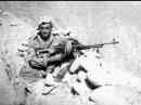25 лет вывода советских войск из Афганистана Держись брат
