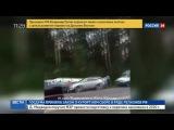 Новости на «Россия 24» • Сезон • В Перми пассажирский автобус врезался в дерево