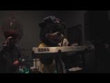 Мишка ECCO играет в рок-группе!