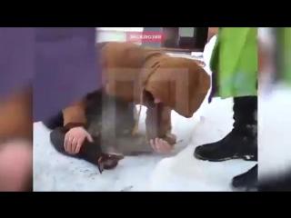 Житель Перми бросился в горящий дом, чтобы спасти кошку и собаку