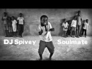 Soulmate (A Soulful, Afro House Mix) by DJ Spivey