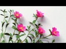 ABC TV How To Make Portulaca Grandiflora Paper Flower From Crepe Paper Craft Tutorial
