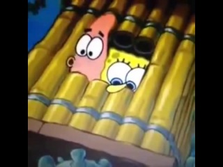 Funny Things | Funny Videos | Spongebob gets a lot of PUSSY! Funniest Vine Ever !
