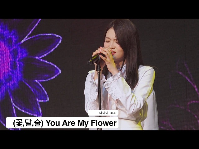 다이아 DIA[4K 직캠](꽃,달,술) You Are My Flower@170419 Rock Music