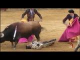 El torero Roca Rey sufre una fuerte conmoci