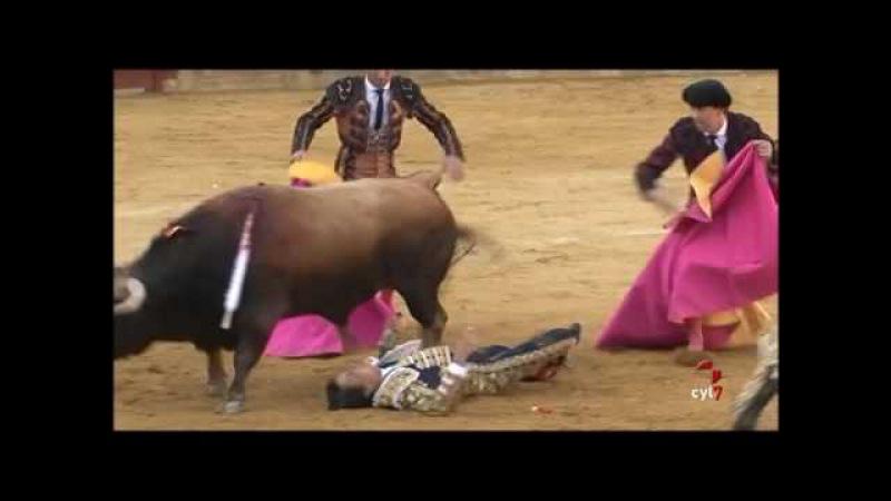 El torero Roca Rey sufre una fuerte conmoción cerebral tras una cogida en la Feria de San Antolín