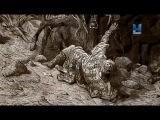 Тени средневековья 3 сезон 1 серия. Битва у Брода Иакова / Medieval Dead (2016)