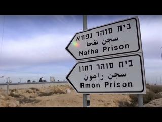 Журналист Нaaretz рассказал о пытках в тюрьмах Израиля