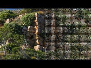 Mograph Multi Shader Tutorial for Cinema 4D