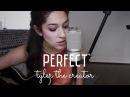 Perfect by Tyler The Creator ft. Kali Uchis Austin Feinstein (Cover) by Sara King