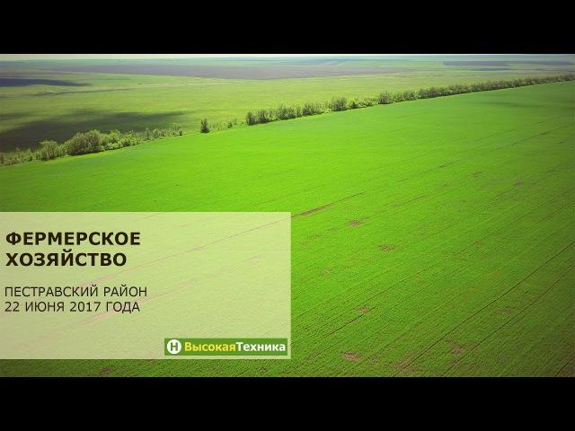 Фермерское хозяйство в Пестравском районе
