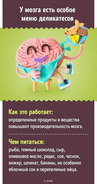 Фото №456240267 со страницы Гамзата Кудбудинoва
