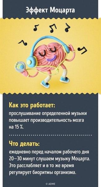 Фото №456240263 со страницы Гамзата Кудбудинoва