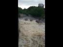 Река Сестра после дождя. г. Сестрорецк.