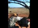 Armalite AR10T 308 340 Yards