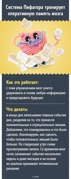Фото №456240269 со страницы Гамзата Кудбудинoва