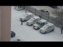 Зимние забавы и полицейским не чужды: петербургских стражей правопорядка засняли за игрой в снежки