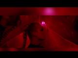 Scavenger Hunt - Never Enough (The Neon Demon Edition)