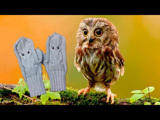 Видеоурок по вязанию перчаток Сова