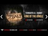 Terravita &amp J. Rabbit - King Of The Jungle