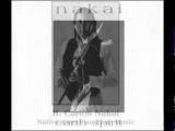 R. Carlos Nakai - EARTH SPIRIT 15