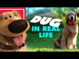 DisneyPixars Dug the Talking Dog In Real Life Oh My Disney IRL