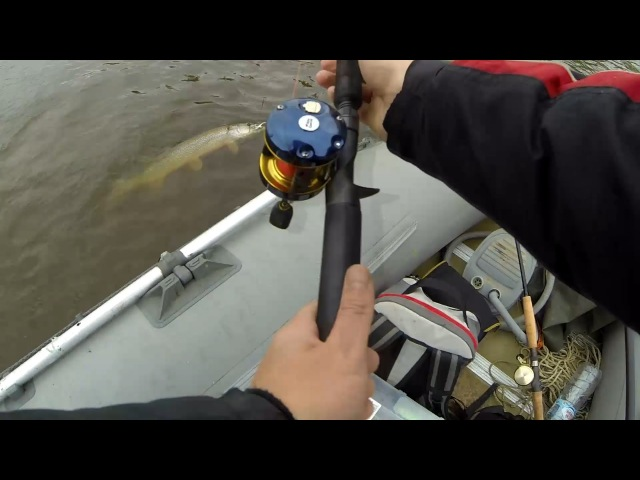 Sebile. Bonga Jerk. Jerkbait fishing for pike in Siberia. Рыбалка на джеркбейты в Сибири. Щука.
