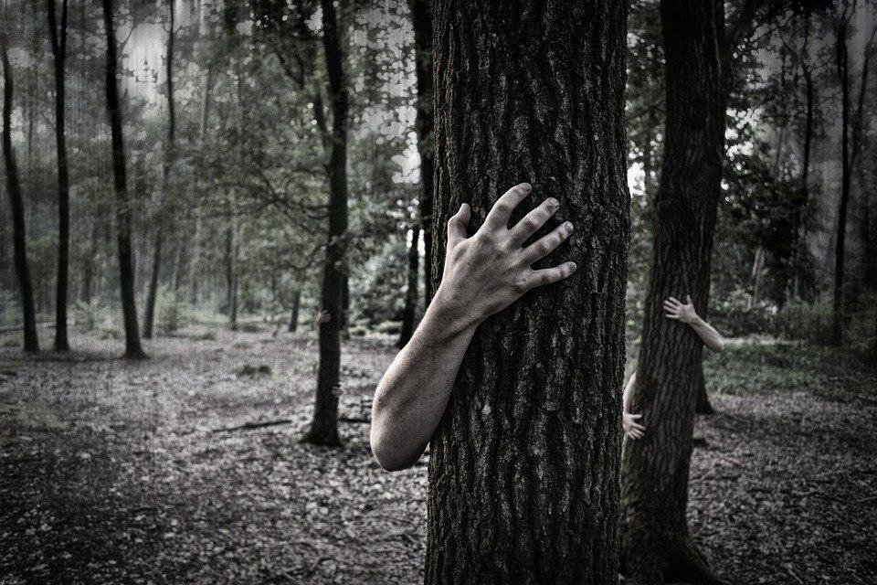 Ужасно красивые: 13 фотографий в преддверии Хэллоуина