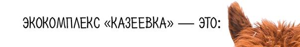 Экоказеевка