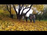 Осень в Ясной Поляне