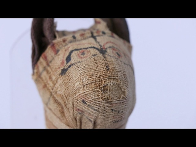 Mummified CAT scan: New technologies and ancient objects