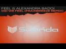 Feel Alexandra Badoi - Did We Feel (Frainbreeze Extended Progressive Dub Mix)