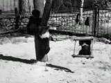 Семнадцать мгновений весны.Плейшнер в зоопарке._low